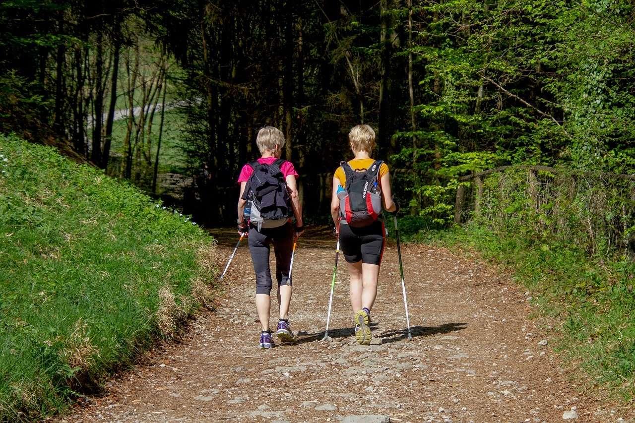 Nordic walking, erdei séta, egészség, sport