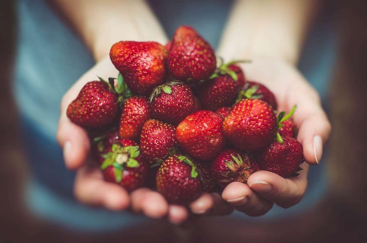 eper, nyár, sorbé, nyári finomságok