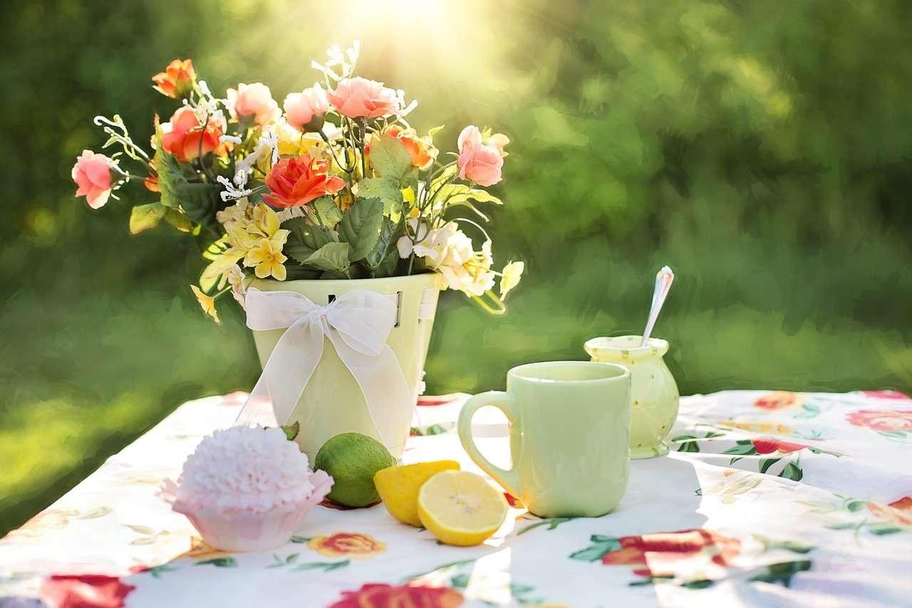 nyári étkezés, kerti parti, társasági élet